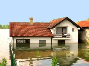 Flood Insurance Agent Eugene, OR
