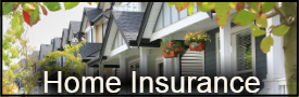Home Insurance Agent, Eugene, OR